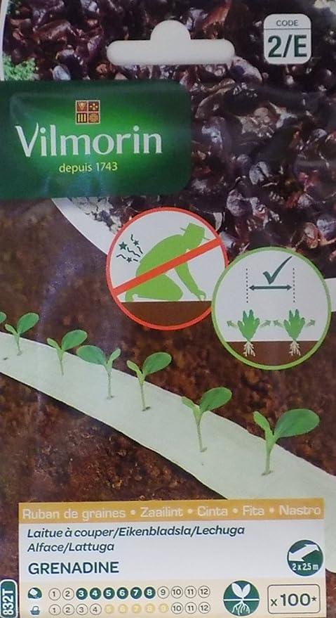 2 Cintas biodegradables Vilmorin 100 semillas LECHUGA GRENADINE ...