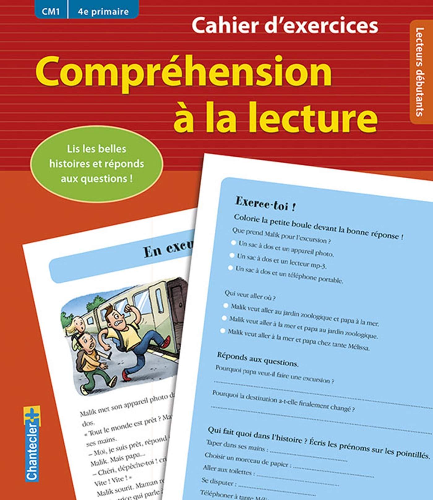 Cahier D Exercices Comprehension A La Lecture Cm1 4e P Vermeulen Moniek 9782803456611 Elementary Education Amazon Canada