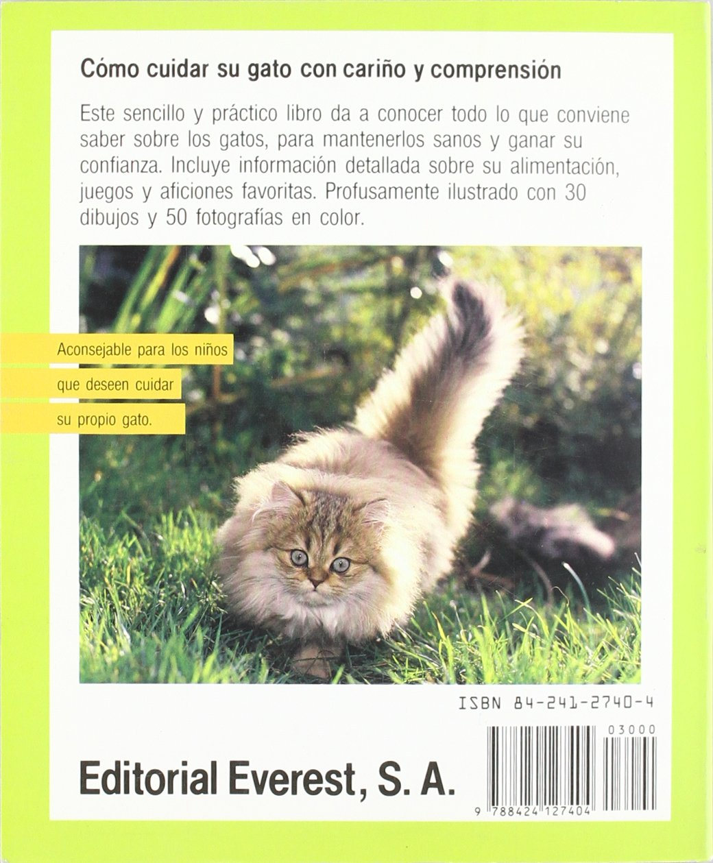 Gatos - Saber Cuidarlos y Comprenderlos (Spanish Edition): Katrin Behrend: 9788424127404: Amazon.com: Books
