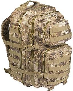 2f576fd7cb717 Amazon.com : Mil-Tec Military Army Patrol Molle Assault Pack ...