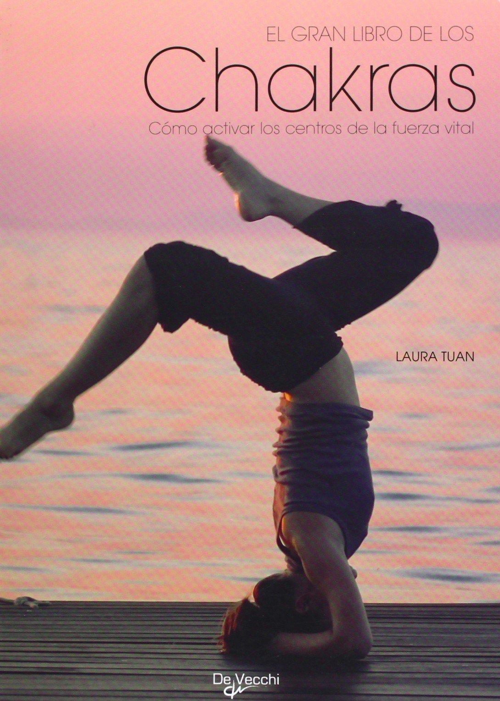 El gran libro de los chakras: Varios: 9788431536909: Amazon ...