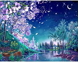 """DIY Paint by Numbers Kit for Adults - Blue Nights Nature 