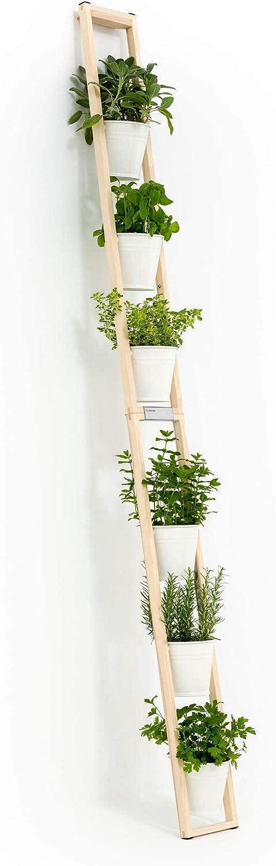Wei/ß Kr/äutert/öpfe 2 in 1 Blumenregal Blumenleiter kann frei Stehen oder hochgestellt an Einer Wand lehnen Pflanzleiter
