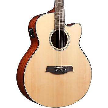 Ibanez ael108td 8-string acústica guitarra eléctrica: Amazon.es: Instrumentos musicales