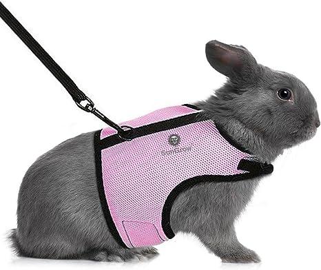 SunGrow Trixie - Arnés de conejo (color rosa amapola) con velcro y ...