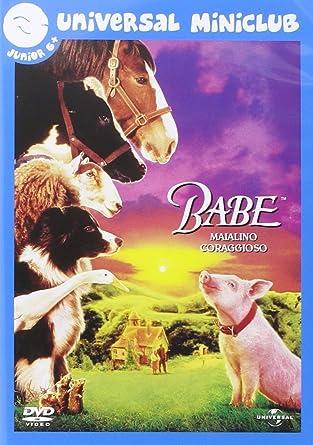 babe border collie