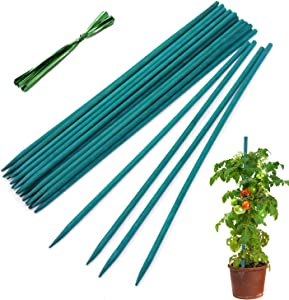 HAINANSTRY Garden Wood Plant Stakes Green Bamboo Sticks, Sturdy Floral Plant Support Stakes Wooden,Wooden Sign Posting Garden Sticks(25 Pack 15 Inches)