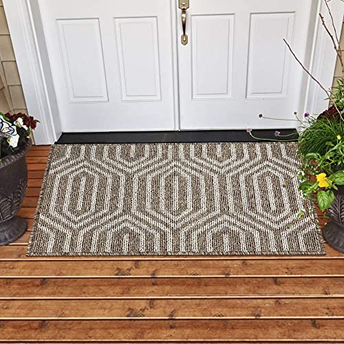 YHOUSE Indoor Doormat Front Back Door Mat Rubber Backing Non Slip Door Mats Inside Floor Mud Dirt Trapper Mats Entrance Front Rug Shoes Mat Machine Washable Carpet 24 x 36 , Brown Time Cloister