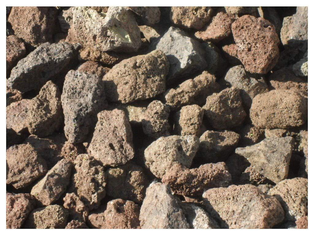 10 kg Pierres de lave 32-56 mm Barbecue / Gril Der Naturstein Garten