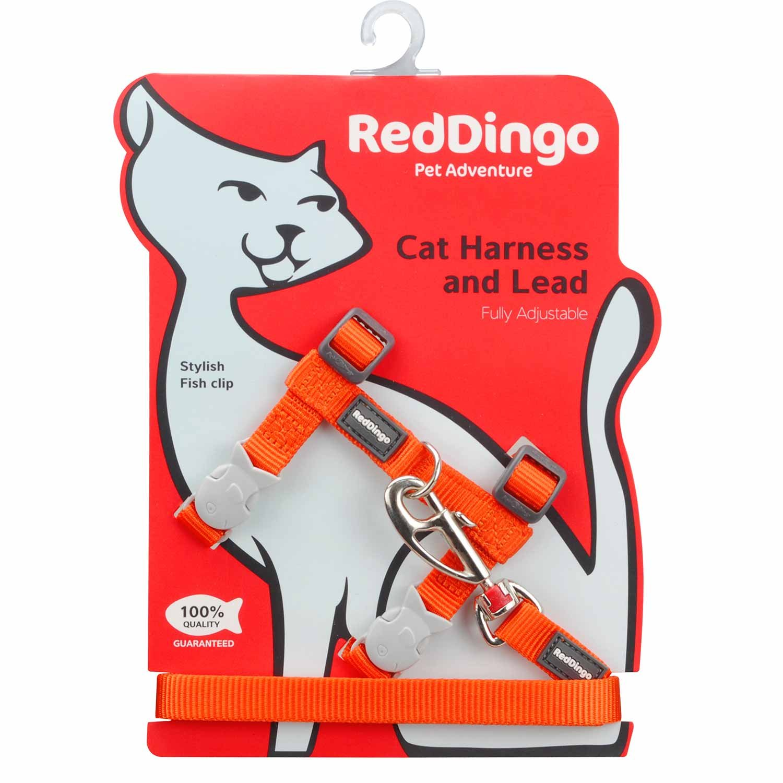 Red Dingo Classic Gato arnés y Plomo Combo: Amazon.es: Productos ...
