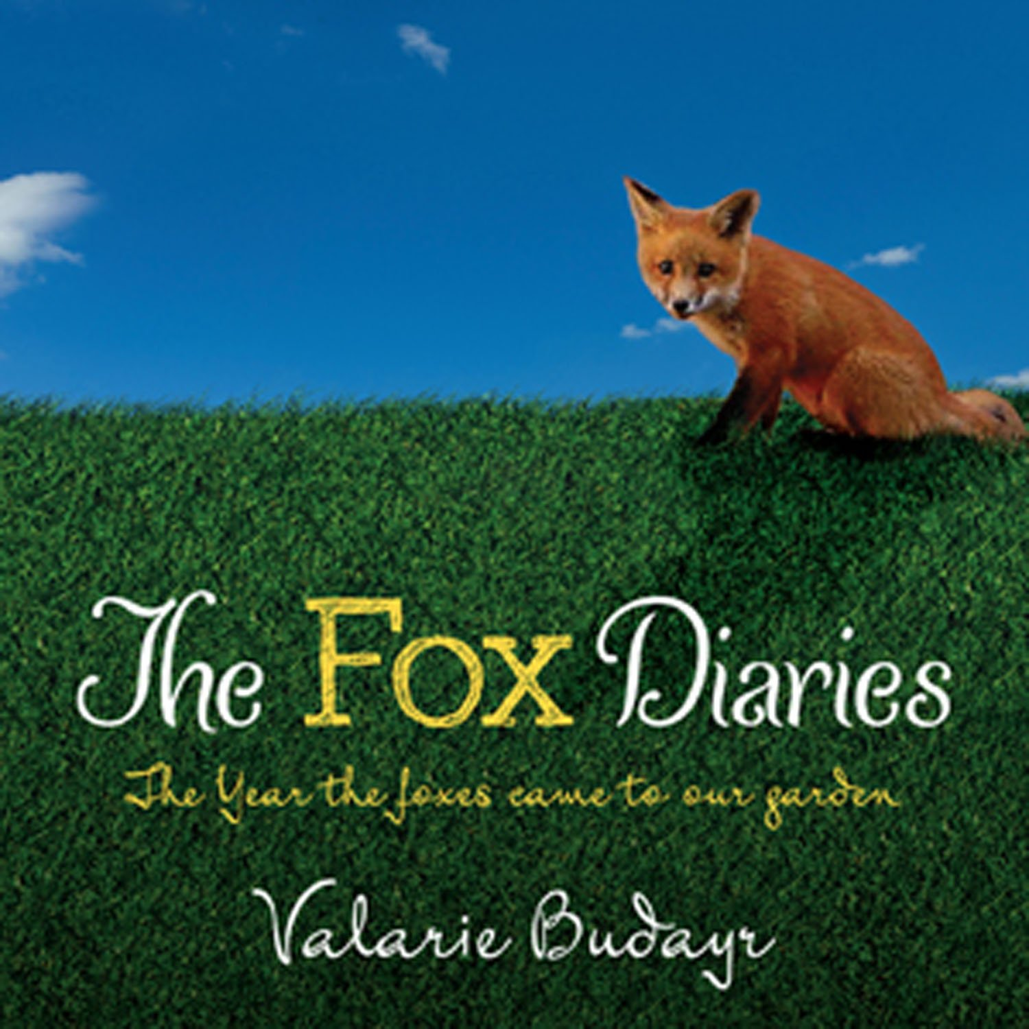 The Fox Diaries: The Year the Foxes Came to our Garden ebook
