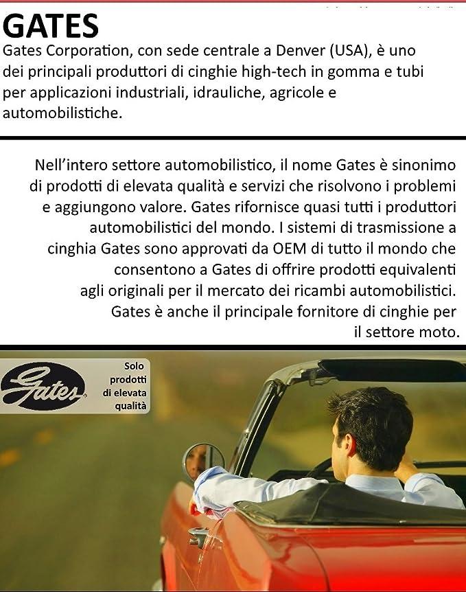 Kit distribución Gates Opel Insignia 2.0 CDTI kW 103 cv 140: Amazon.es: Coche y moto