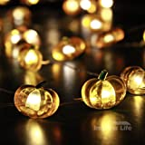 IMPRESS LIFE Pumpkin String Lights 10 ft Copper Wire 40 LEDs Battery-powered for Indoor, Covered Outdoor, Thanksgiving, Harvest, Halloween, Baby Shower Parties, DIY Dorm Decor with Remote & Timer