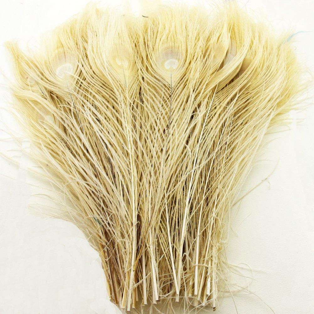 72pcs/lot al por mayor para bodas y decoración de plumas de pavo real Vintage Party decorativa penacho About 9.7-11.7 inches beige Shaoye