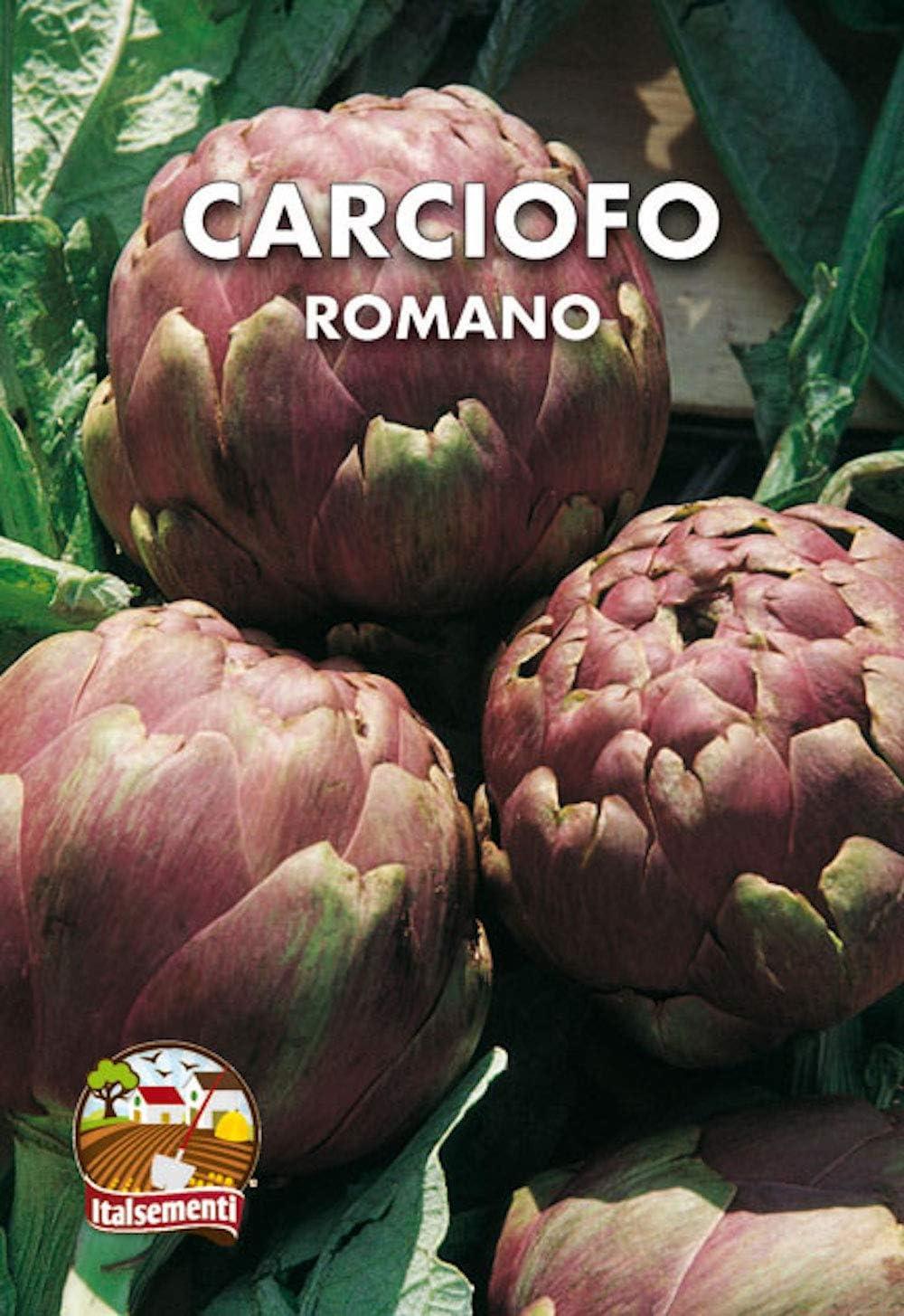 Alcachofa romana - SEMILLAS