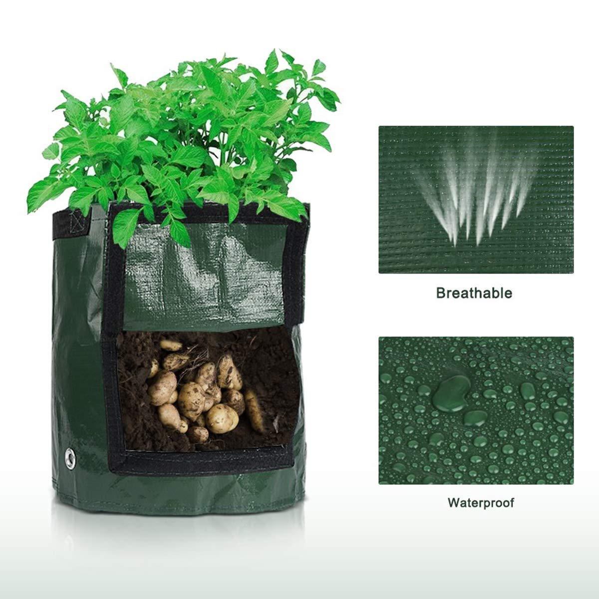 35cm x 45cm Patate Grow Borse,aerazione Tessuto Pentole Lychee/® Sacchetto di piantatura patata 2-Pack 10 Gallon Borse PE per coltivare patate carote e cipolla