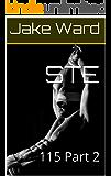 STE: 115 Part 2 (English Edition)