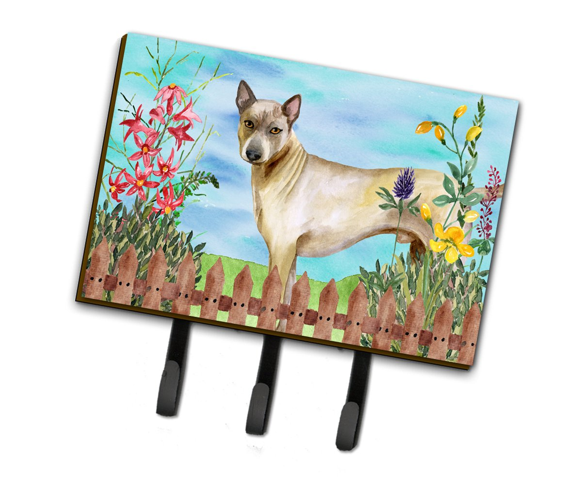 Caroline's Treasures Thai Ridgeback Spring Wall Hook, Triple, Multicolor by Caroline's Treasures