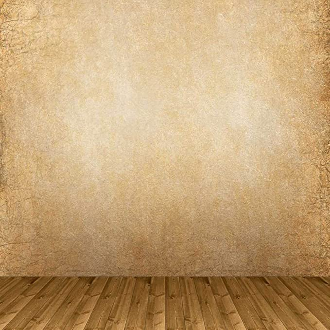 GladsBuy Plain Wall 10 x 10 Computer Printed Photography Backdrop Wall Theme Background S-1868