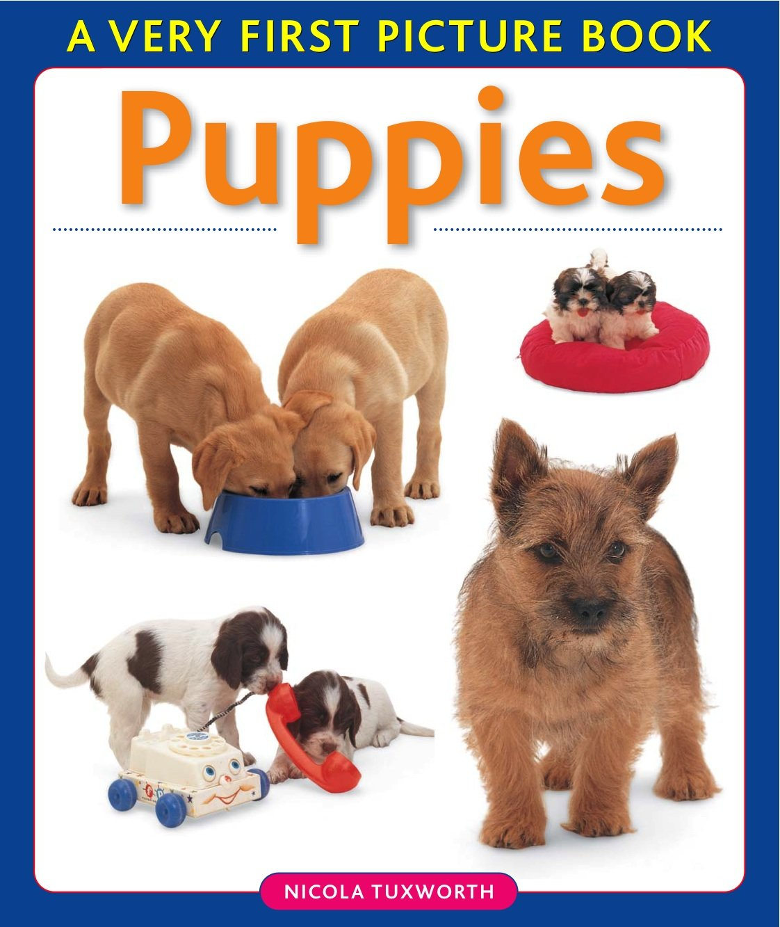 Puppies (Very First Picture Book) ebook