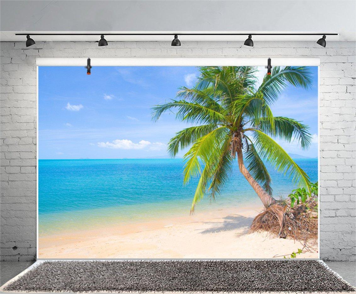 Cassisy 3x2m Vinyle Mer Toile de Fond Photo Tropical Plage de Sable Hamac Sunny Sky Arbres de cocotier Fond De Studio Photo Portrait Photographie Props Photobooth