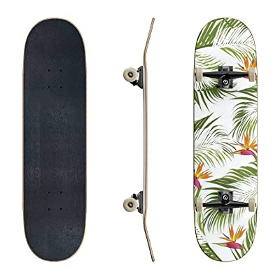 EFTOWEL Skateboards Seamless Pattern Palm Leaves with Bird of Paradise on White Background Classic Concave Skateboard Cool Stuff Teen Gifts Longboard Extreme Sports for Beginners and Professionals : Sports & Outdoors