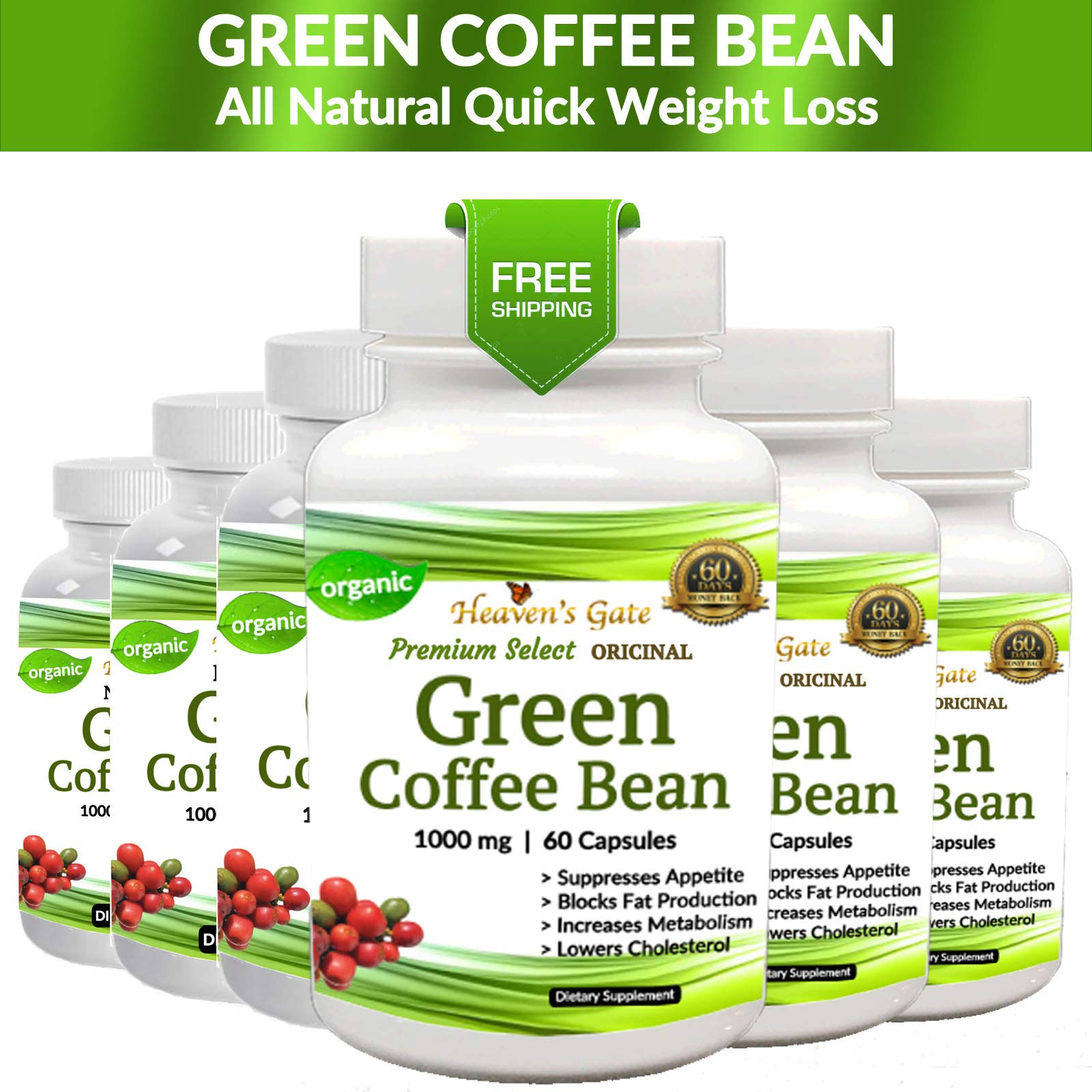 6 Green Coffee Bean - Weight Loss Supplement - Appetite SUPPRESSANT - 360 Capsules 6 Month Supply - 1000 mg - Organic - GMO and Gluten Free - 100% Pure - Fast Weight Loss by Affordable Natural Health