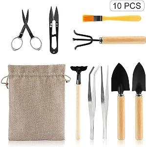 Blusea Garden Planting Tool Set, Bonsai Succulent Transplanting, Miniature Fairy Garden Planting, Gardening Hand Tools for Home Office Garden, 10PCS