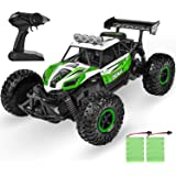 Remote Control Car ,RC Cars Toy Grade 1:16 Scale, Hobby Off Road High Speed 20 Km/h All Terrains Electric Remote Control…