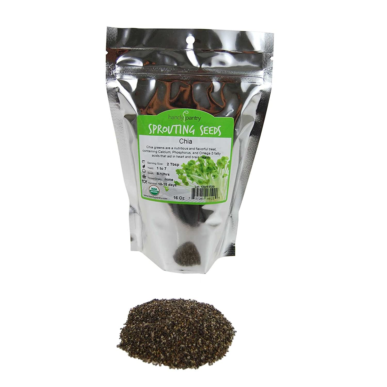 Amazon.com: Orgánico semillas de chía, color negro Chia Chia ...