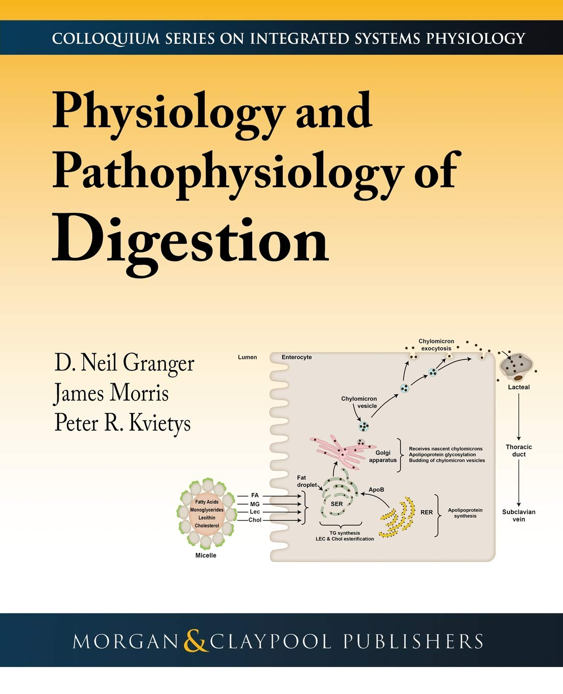 Buy Physiology and Pathophysiology of Digestion (Colloquium