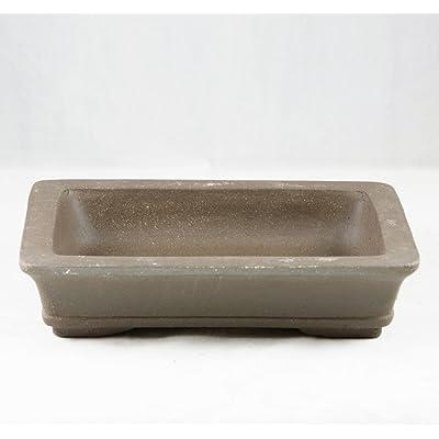 "Rectangular Yixing Zisha Bonsai Pot 10""x 7.5""x 2.25"": Garden & Outdoor"
