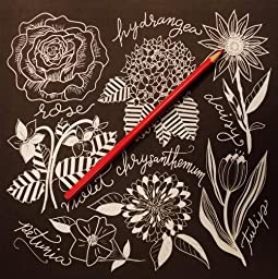 Amazon Chalk Style Botanicals Deluxe Coloring Book