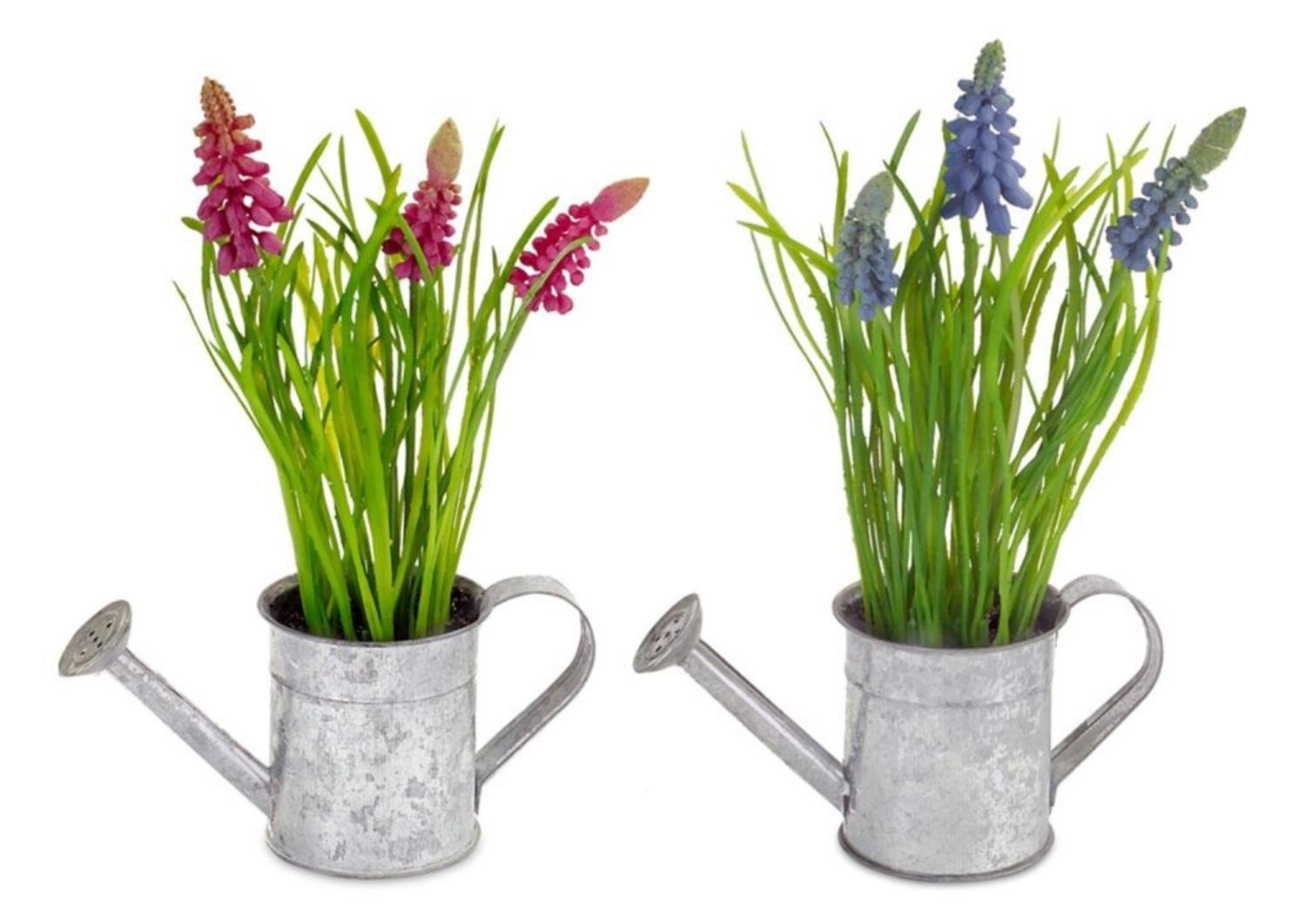 Club Pack of 12 Colorful Hyacinth in Weathered Looking Watering Can 8.5""