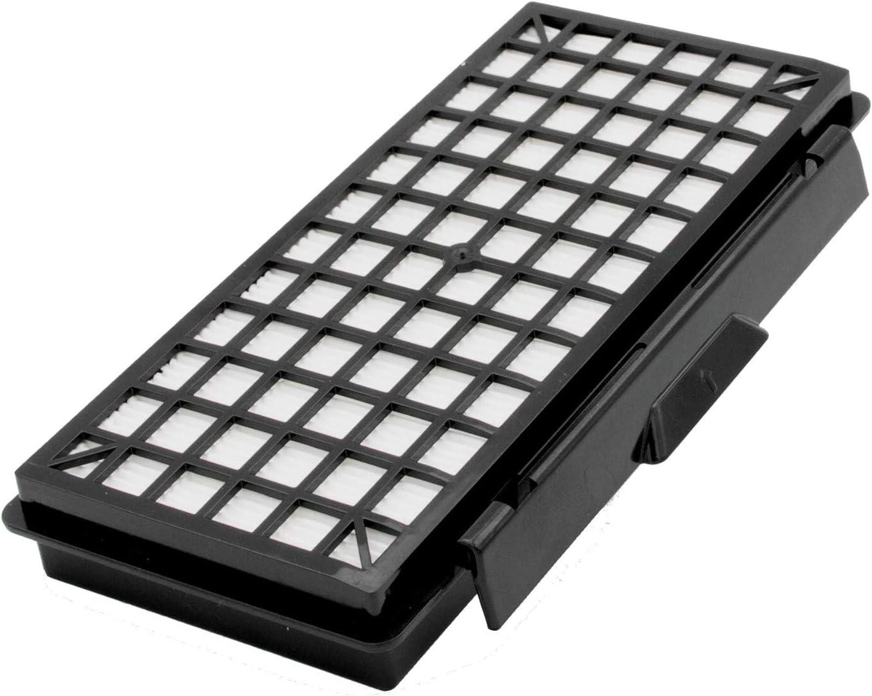 Filtro Hepa para aspiradora Bosch BSGL5ZOO2 Zoo o ProAnimal GL50 como original BBZ154HF de Microsafe
