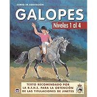 GALOPES NIVELES DEL 1 AL 4 (Curso