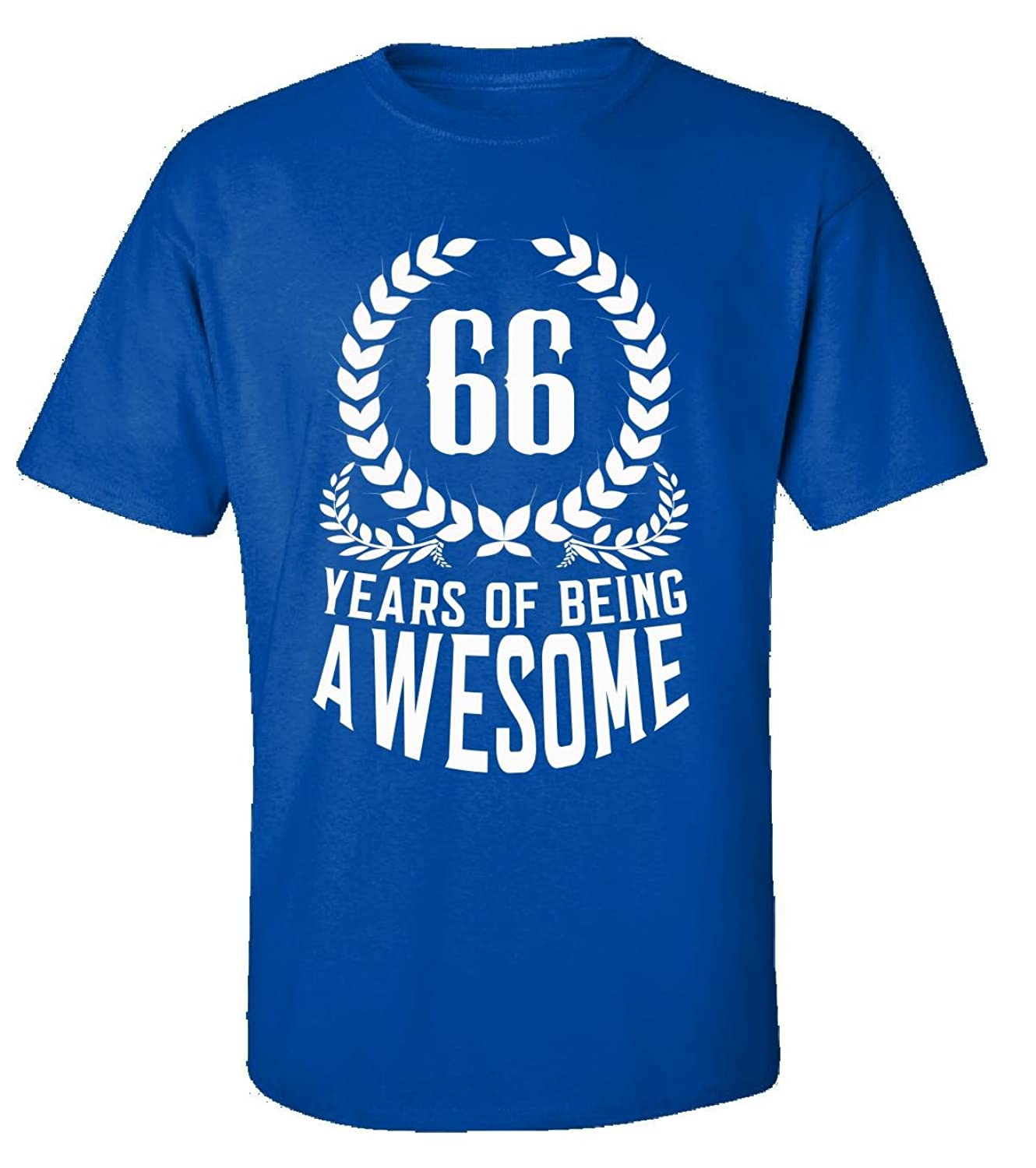 66th Birthday Gift For Men Woman 66 Years Of Being Awesome - Adult Shirt