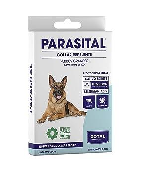 f7635c1d18bd Zotal - Parasital Collar Antiparasitario de 75 cm para perros grandes   Amazon.es  Productos para mascotas