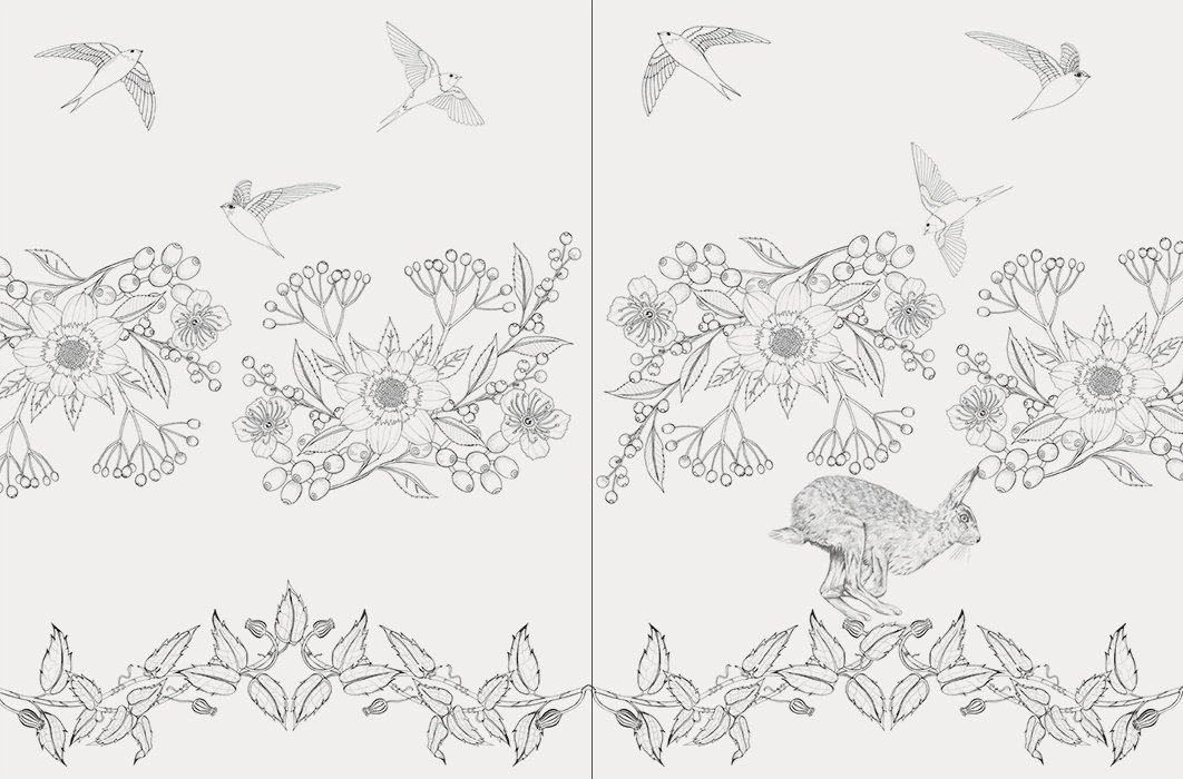 世界の美しい鳥と花のぬり絵ブック ディジーフレッチャーdaisy