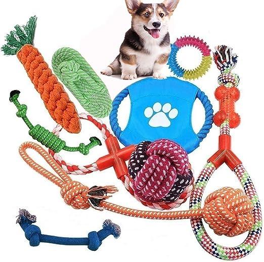 YUMOMO 10 PCS Perro Mascota Juguetes Interactivos, Puppy Chew Dog ...