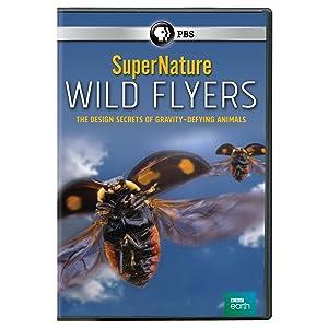 SuperNature - Wild Flyers