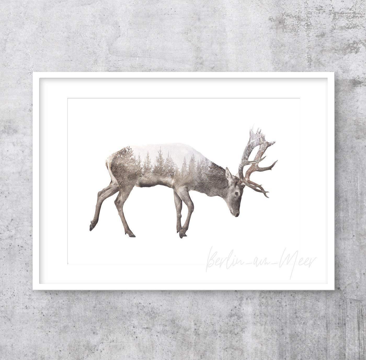 Tier Wald skandinavisch DIN A4 Kunstdruck Poster DEER /& FOREST -ungerahmt- Hirsch nordisch