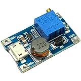 Rasbee USBポート 2A DC-DC ブーストステップアップ 転換モジュール Micro USB 2V-24V to 5V-28V 9V 12V 24V 1個 [並行輸入品]