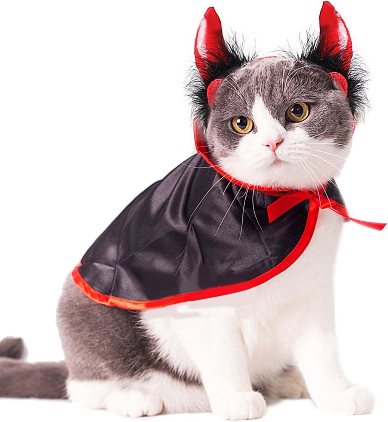 A cat wearing a devil costume