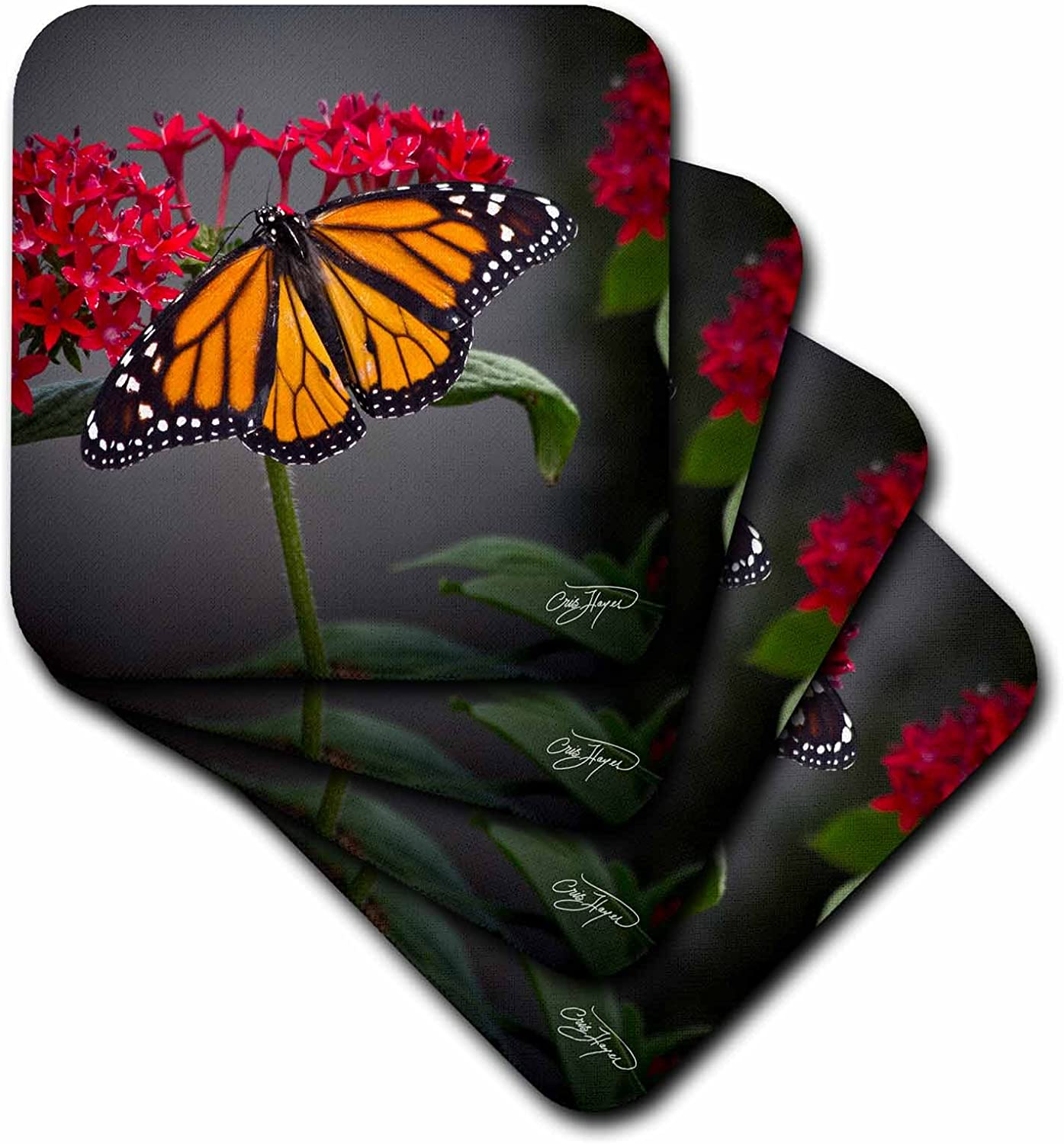 3dRose CST_53063_1 Kiss of The Butterfly in Spring with Flowers Décor Soft Coasters, Set of 4