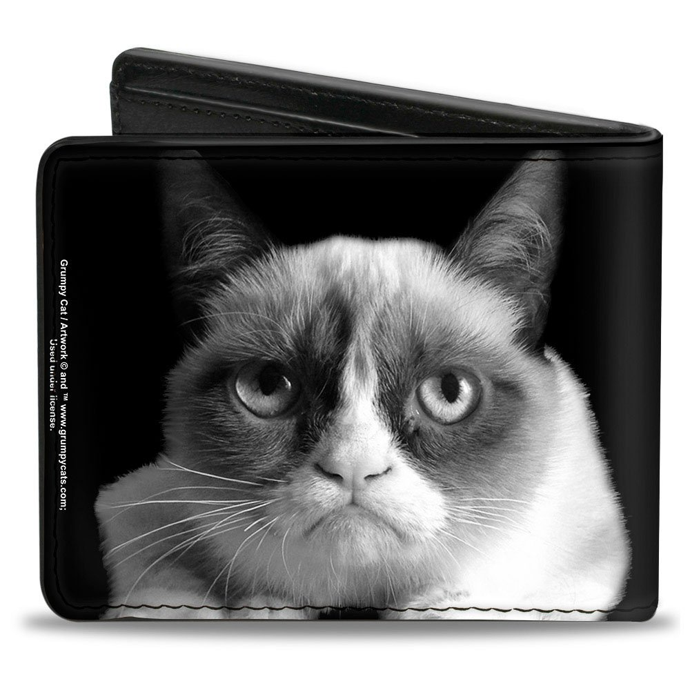 Gruñón Cat - closeup Face On negro sombras Bi-fold cartera: Amazon.es: Deportes y aire libre