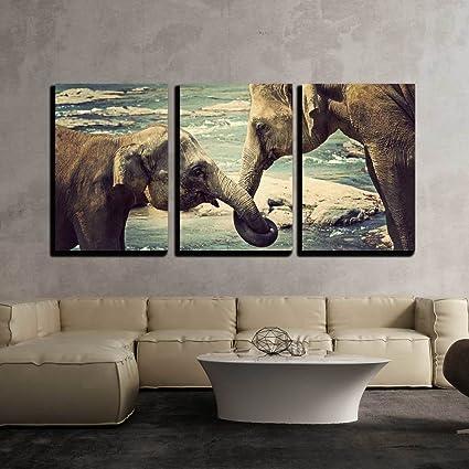 Amazoncom Wall26 Elephants Kissing Sri Lanka Canvas Art Wall