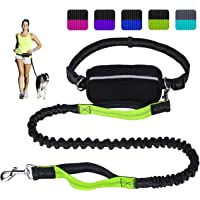 LANNEY Hands Free Dog Leash for Running Walking Training Hiking, Dual-Handle Reflective Bungee, Poop Bag Dispenser Pouch, Adjustable Waist Belt, Shock Absorbing, Ideal for Medium to Large Dogs