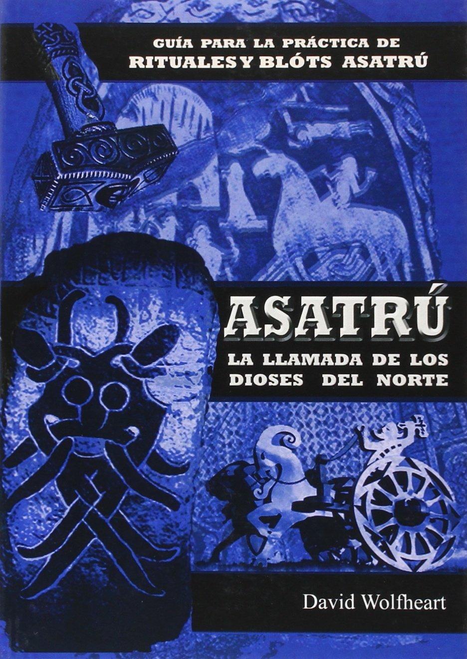 Una religión nativa: La llamada de los dioses del norte: Amazon.es: David  Wolfheart: Libros
