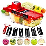 BYETOO Mandoline Slicer Vegetable Cutter Grater Chopper Julienne Slicer-6 Interchangeable Blades with Peeler,Hand…